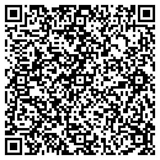QR-код с контактной информацией организации НАСИБУЛЛИН, ИП