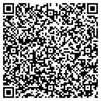 QR-код с контактной информацией организации САЛМИН, ЧП