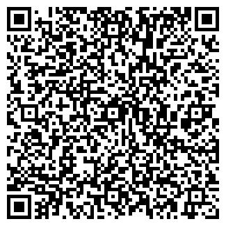 QR-код с контактной информацией организации ЛЕДЯНОЙ МИР