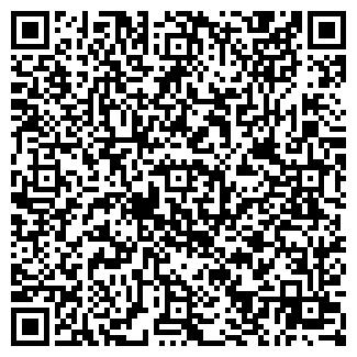 QR-код с контактной информацией организации ЛАПКИНА ЧП