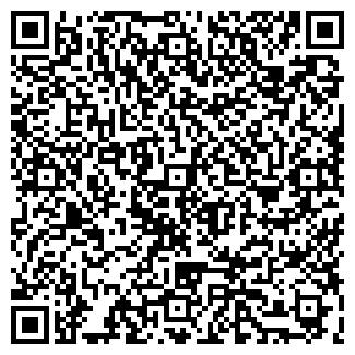 QR-код с контактной информацией организации СУРИНА ИП