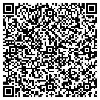 QR-код с контактной информацией организации № 8 ДЕЛЬФИН