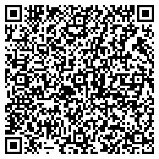 QR-код с контактной информацией организации № 168 ВИТА
