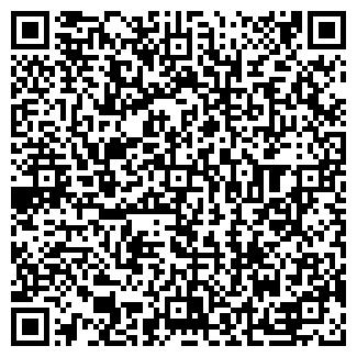 QR-код с контактной информацией организации № 33