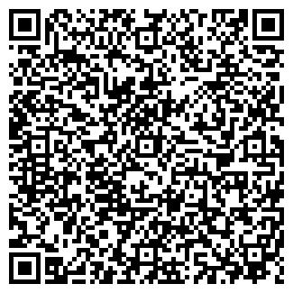 QR-код с контактной информацией организации МОЛНИЯ ООО