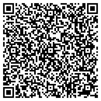 QR-код с контактной информацией организации № 41