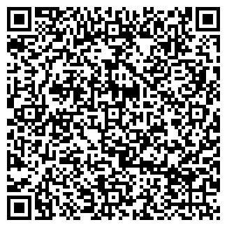 QR-код с контактной информацией организации БЕЛФОРТ ООО