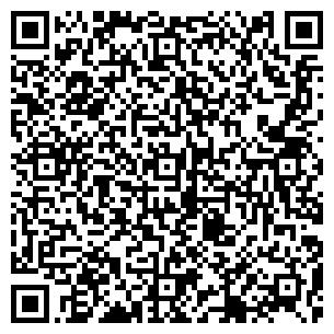 QR-код с контактной информацией организации ДИНИСЛАМОВ ИП