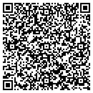 QR-код с контактной информацией организации ФЕНИКС-LTD