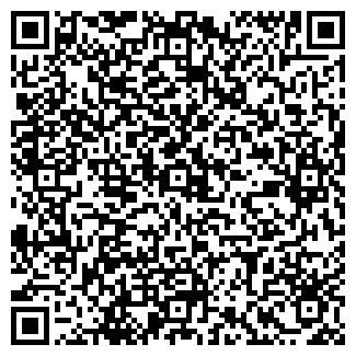 QR-код с контактной информацией организации ТЕОДОР ООО