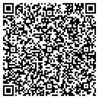 QR-код с контактной информацией организации № 98