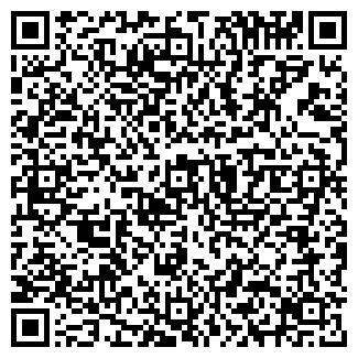 QR-код с контактной информацией организации ШЕМУРША ТД