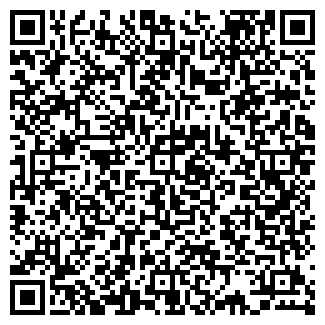 QR-код с контактной информацией организации ИГРОВОЙ САЛОН