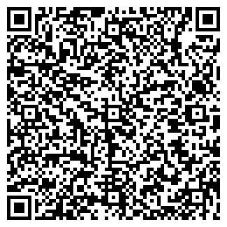 QR-код с контактной информацией организации № 19 ЕЛОЧКА