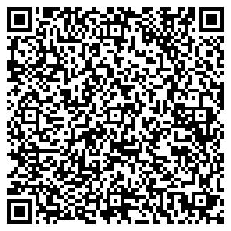 QR-код с контактной информацией организации № 141 ПИЛЕШ