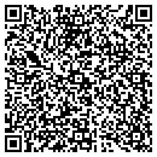 QR-код с контактной информацией организации № 151 РОМАШКА