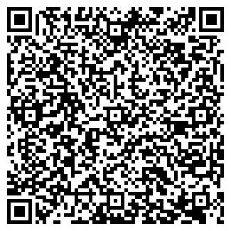 QR-код с контактной информацией организации ЛИЦЕЙ N1, ГОУ