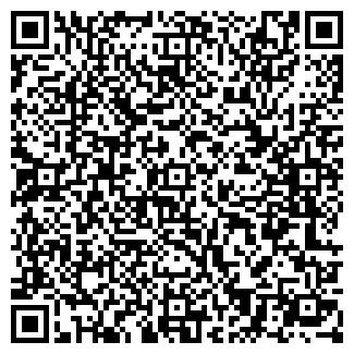 QR-код с контактной информацией организации АРСИОН ООО