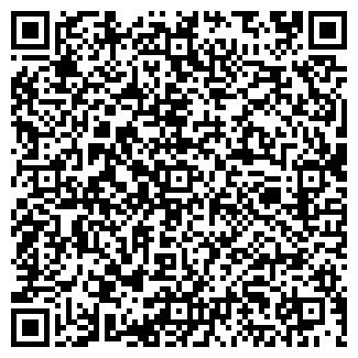 QR-код с контактной информацией организации № 234