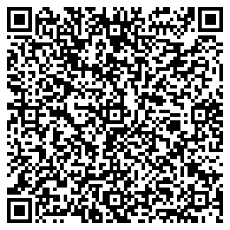 QR-код с контактной информацией организации № 241