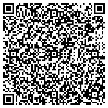 QR-код с контактной информацией организации ЗАЙБЕЛЬ Н. В., ИП