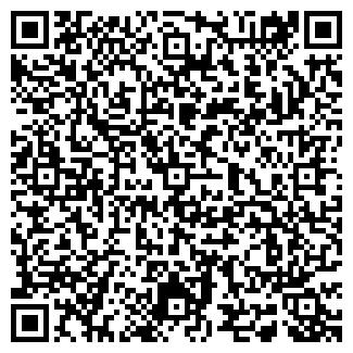 QR-код с контактной информацией организации АВГИС, ООО