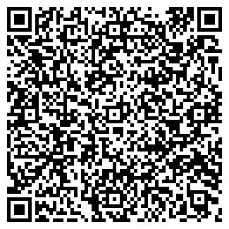 QR-код с контактной информацией организации ДИСИ, ООО