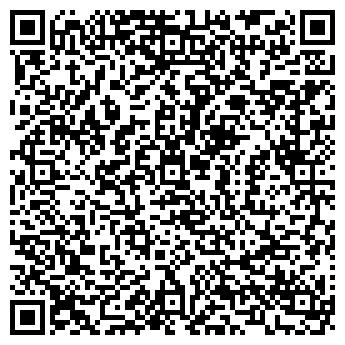 QR-код с контактной информацией организации СТАБИЛЬНОСТЬ