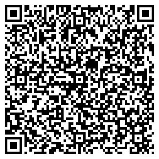 QR-код с контактной информацией организации БАГ, ООО