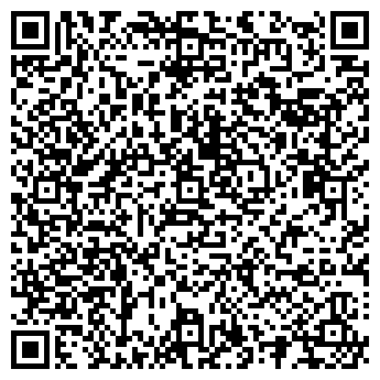 QR-код с контактной информацией организации АЛЕКСЕЕВ, ИП