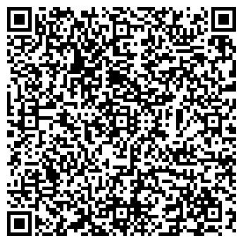 QR-код с контактной информацией организации ВОЛОДИН, ИП