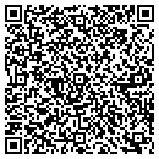 QR-код с контактной информацией организации ВИЛЛИНА, ООО