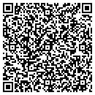 QR-код с контактной информацией организации ВИЗИТ, ООО