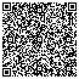 QR-код с контактной информацией организации ВИП-СИСТЕМЫ ТОО