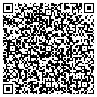 QR-код с контактной информацией организации ДВОРЕЦ РЕСПУБЛИКИ
