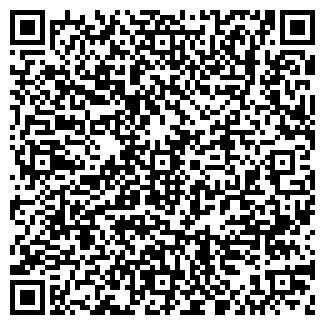 QR-код с контактной информацией организации БОРИСОВА, ЧП