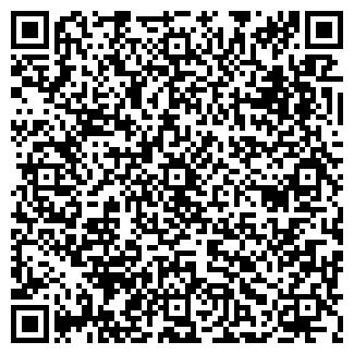 QR-код с контактной информацией организации ДУБЛЬ-2