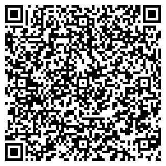 QR-код с контактной информацией организации СВЕТЛАНА, ООО