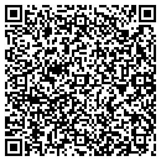 QR-код с контактной информацией организации СТУДИЯ 53