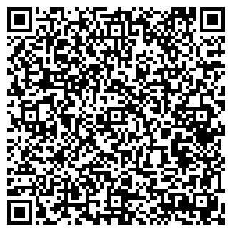 QR-код с контактной информацией организации ГРИШИНА, ЧП