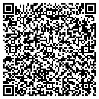 QR-код с контактной информацией организации ЭФО, ООО
