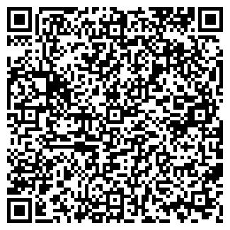 QR-код с контактной информацией организации ООО LION
