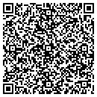 QR-код с контактной информацией организации VIKING