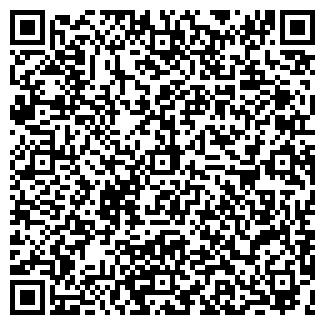 QR-код с контактной информацией организации АЛИСА, ООО