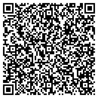 QR-код с контактной информацией организации ЛИТ, ООО
