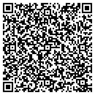 QR-код с контактной информацией организации РИМИЗ, ООО