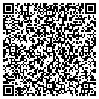 QR-код с контактной информацией организации РОЗИКОВ, ЧП