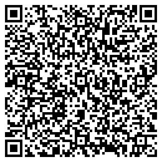 QR-код с контактной информацией организации РЕЙЗИН, ООО