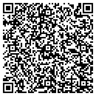 QR-код с контактной информацией организации ДИНГО