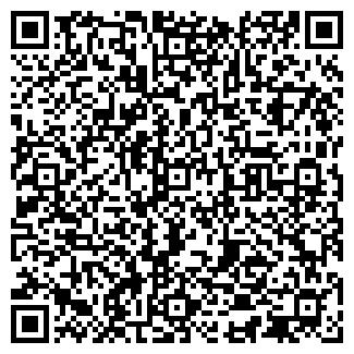 QR-код с контактной информацией организации ТЕПЛОИМПОРТ-АЗИЯ